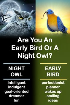 See what sets early birds apart from night owls. We have collected for you, 7 differences between early birds and night owls. Night Owl Quotes, Body Cells, Goals Planner, Go Getter, Owl Bird, How To Wake Up Early, Early Bird, Getting To Know You, Life Motivation