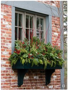 house flower boxes 502995852117293148 - winter holiday greenery in window boxes, Mariani Landscape via Traditional Home Source by nourishnestle Christmas Window Boxes, Winter Window Boxes, Christmas Planters, Christmas Greenery, Christmas Porch, Outdoor Christmas Decorations, Winter Christmas, Fall Planters, Winter Window Display
