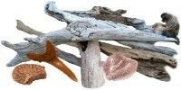 Beautifying Driftwood. How to clean, dry and polish driftwood