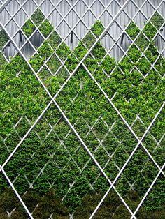 Weaving Inspiration | Green | McKernan Woollen Mills | Handmade scarves in Ireland