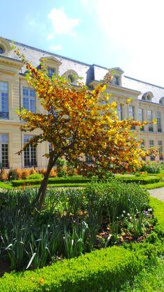 Academie des Arts in #Marais by #Delicious_paris