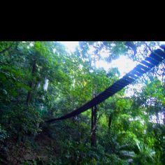 Hanging bridge, Bacolod philippines