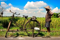 A Balinese worker with his traditional hat and bicycle in the rice never ending rice fields of Ubud.