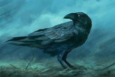 Corvus by DanteCyberMan.deviantart.com