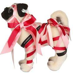 Pugs Para Crianças Felizes - Pug Dogs For Happy Kids