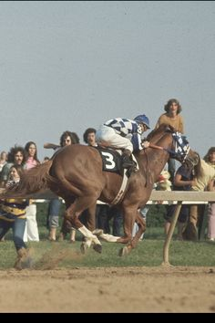 "Secretariat. His heart was 2x larger than the average equine heart, considered a massive ""engine"". Look at him fly!!!"