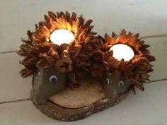 Pindsvin med lys