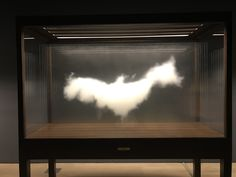 Leandro Erlich | Seeing and Believing
