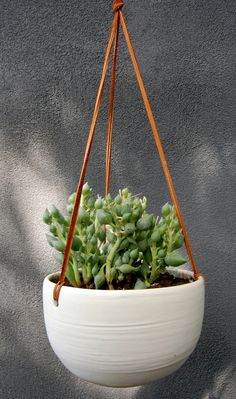 I need this in my room... Oh well, that wouldn't work unless I had something to catch water the plants dripped underneath.. But it would look cute on our front porch.