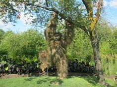 Amazing botanical topiary orangutan at Montreal Quebec Canada!