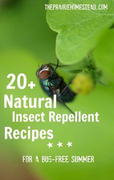 20+ Natural DIY Bug Spray recipes--for you and your garden!