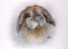 Rabbit print from original by valdasfineart on Etsy