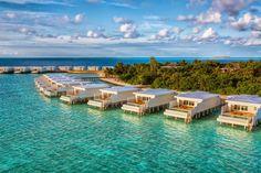 Malediven Urlaub - besuchen Sie das Fünfsterne-Resort Amilla Fushi  - http://freshideen.com/reisen-urlaub/malediven-urlaub.html