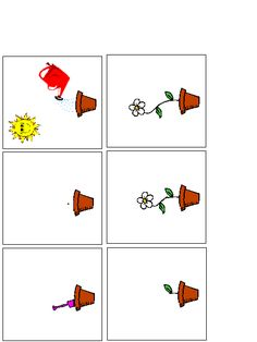 A Child's Place - Flower Sequence Cards