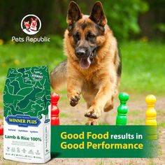 Fill your dog's bowl with antioxidant-rich nutrition and you're giving him of the nutrients he needs to help him thrive every day, all in a mix of tender and crunchy bites dogs love. Dog Food Online, Gluten Free Diet, Protein Sources, Cat Food, Dog Bowls, Dog Love, Allergies, Dog Food Recipes, Lamb
