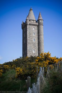 Scrabo Tower, Northern Ireland - when I was little I used to call it Bo-scrab!