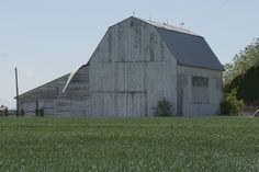Clinton Barn  In the process of being torn down.