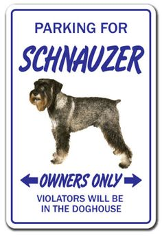 Check out our website for more details on schnauzers. It is a superb location for more information. Schnauzer Art, Miniature Schnauzer, Puppy Kennel, Dog Table, Novelty Signs, Pet Dogs, Pets, Lhasa Apso, Dog Runs