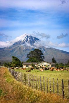New Zealand Farm near volcano Mt. Taranaki - Ed Kruger - Google+