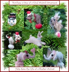 Spider Sisters Studio: Please Help  Death Row Dogs  I'm have new ornament...