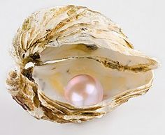 nlscentofawoman:  I love natural pearls, they are so beautiful and fragile and their color is amazing..