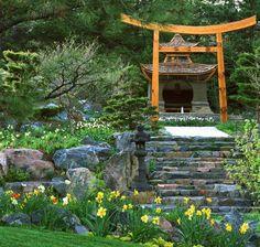 jardin japonais de design extravagant