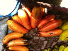 Red bananas.. Seychelles