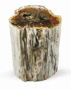 TRONC DE BOIS FOSSILE, ERE SECONDAIRE AU TRIAS MOYEN ET SUPÉRIEUR, PROBABLEMENT MADAGASCAR [A VERY NICE FOSSILIZED WOOD TRUNK, SECONDARY AREA TO MID AND UPPER TRIASSIC, PROBABLY  MADAGASCAR] poli dans sa section supérieure, et présentant une très belle fossilisation de l'écorce sur son pourtour. Très belle minéralisation rouge. Diam. 26 cm ; Haut. 34 cm