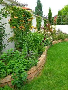 mediterraner Garten von Bioarchitektura Kształtowanie Przestrzeni - Ogrody, Krajobraz, Zieleń we wnętrzach