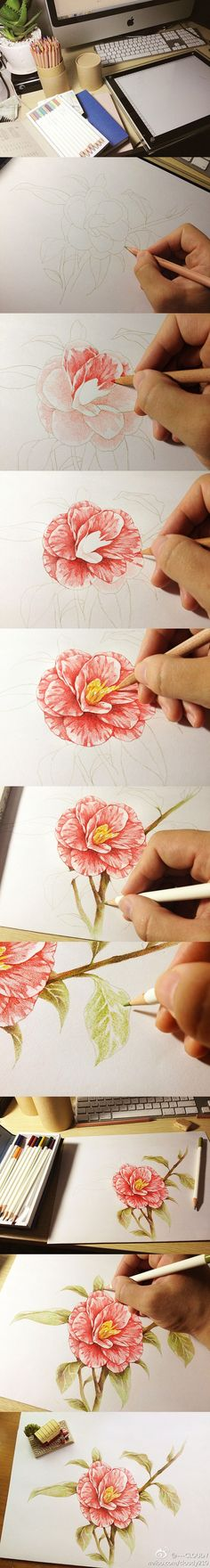 Flowers Drawing Tutorial Pencil New Ideas Pencil Drawings, Art Drawings, Realistic Drawings, Color Pencil Art, Coloured Pencils, Drawing Techniques, Art Tutorials, Drawing Tutorials, Drawing Ideas