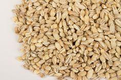 Barley for Breakfast