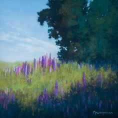 Wild Lupines, Soft pastel painting on sanded paper 22 x 22 cm