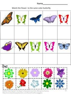 Bugs and Butterflies Cut and Paste is a set of 14 worksheets. It contains multiple pages consisting of What comes next, Color matching, Counting and Matching bugs/butterflies with the right object.