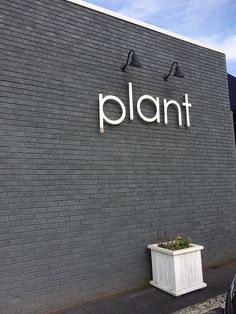 Plant, a vegan restaurant in Asheville - see our amazing dinner there! | HealthySlowCooking.com