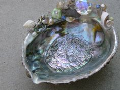 My adorned Abalone shells