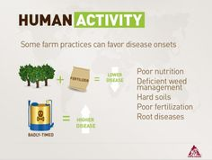 """Human Activity """"Some farms practices can favor disease onset"""""""