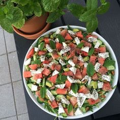 Salater Archives - Wall of Food Raw Food Recipes, Salad Recipes, Vegetarian Recipes, Cooking Recipes, Healthy Recipes, Cooking Tips, Food N, Food And Drink, Healthy Cooking