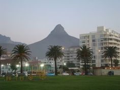 Lions head from sea point Cape Town, Lions, Sea, Ocean, Lion