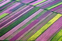 Don't know where to pin this :)  Aerial view of agricultural fields