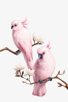 trendy flowers png pictures - Schweinchen & Co - Flowers Bird Drawings, Animal Drawings, Watercolor Bird, Watercolor Paintings, Image Tatoo, Vogel Illustration, Photo D Art, Color Pencil Art, Cute Birds