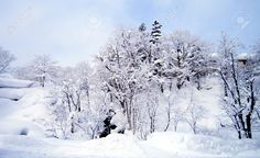 Image result for winter sky