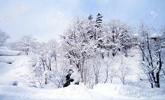 Image result for winter sky