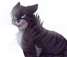 This is Hawkfrost. He is the son of Tigerstar. He was killed by Brambleclaw. Male, played by me