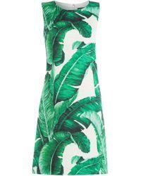 160c3316 Dolce & Gabbana | Silk Banano Print Dress | Lyst Dress Silhouette, Silk  Dress,