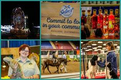 From @atlanticfair  Welcome to Day 2 of the Atlantic Agricultural Fall Fair! Check out everything we have for you today from livestock and horse shows to midway rides to cooking demonstrations lots of dogs fascinating reptiles local vendors...it's all here for you at the Fair! #horsesofinstagram #fairfun #localfarmers  #localfood  #midwayrides #aaff2016 #halifax #halifaxnoise
