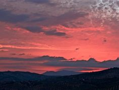 Another gorgeous Andalucian sunset the view from the back of our cortijo. Post on the blog #travel #sunset #sky