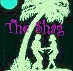 South Carolina dance, The Shag:  We SO need to learn how to 'shag'!  What an amazing way to have fun and get some great exercise too!