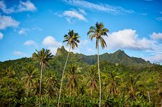 From anywhere on Rarotonga just look up and this is what you'll see