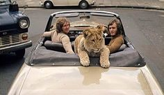 Great story of Christian the lion..check it out on you tube!!