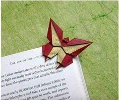 Papillon... ...